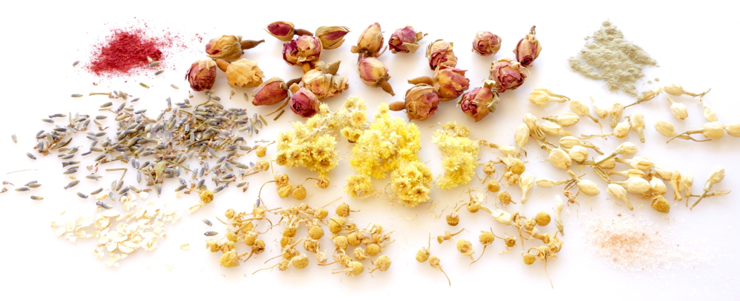 Qet-Botanicals-Natural-Ingredients-and-Ceramides